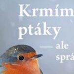 Krmíme ptáky – ale správně – krmení, ochrana a bezpečí pro ptáky po celý rok